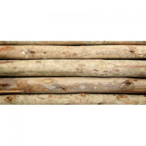 escoras-de-eucalipto-para-construção
